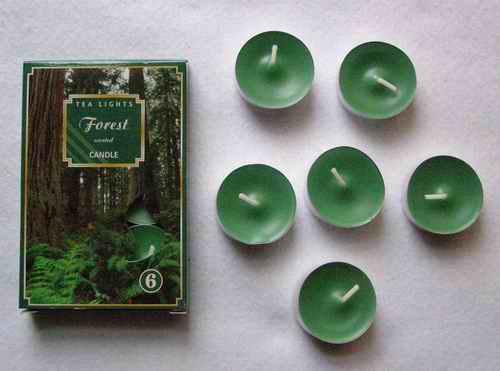Čajové svíčky - Prales